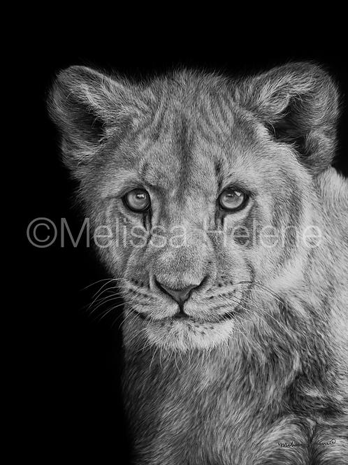 "African Lion Cub | Original | 12""x9"""