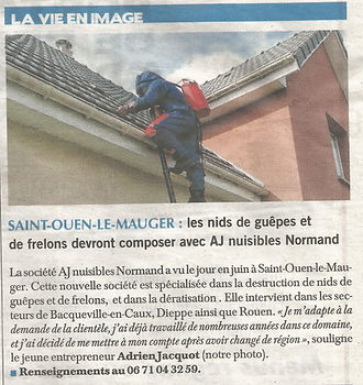 Article Paris Normandie.jpg