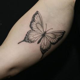 mariposas blackwork.jpg