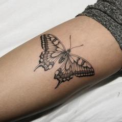 tatuadores trazo fino.jpg
