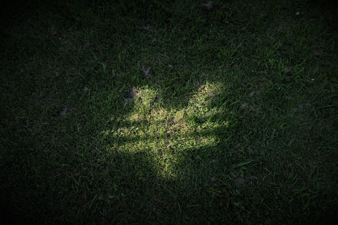 EV shadow.jpg