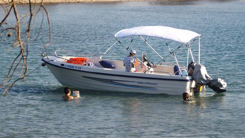 Poseidon Fish 550T