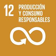 ODS 12 Producto y Consumo Responsable.pn