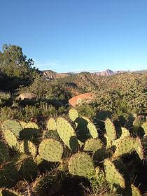 Cactus Happy Trails Adventure