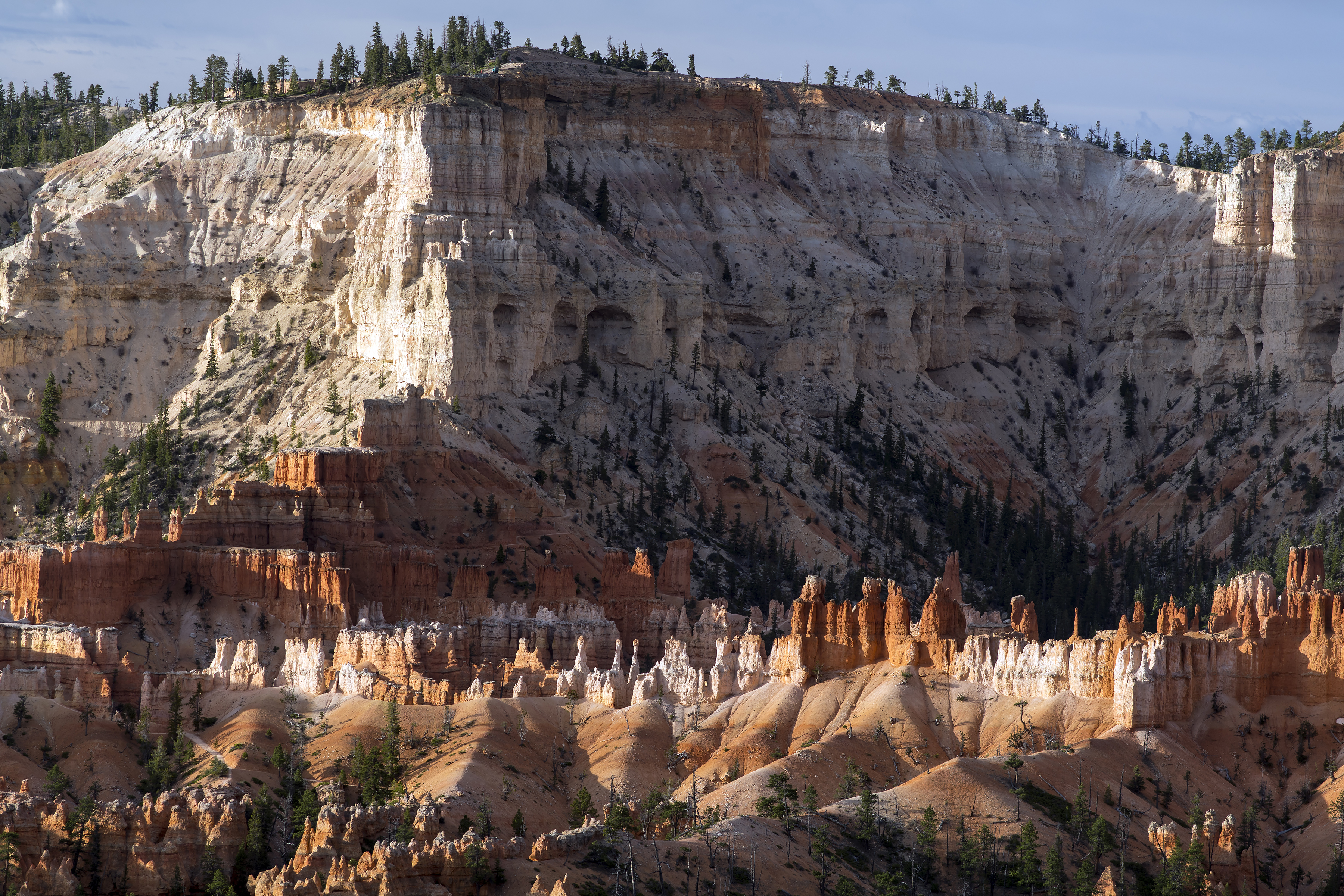 Bryce Canyon 8 8 x 12