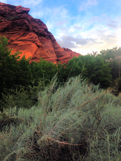 Red Cliffs (85)_edited