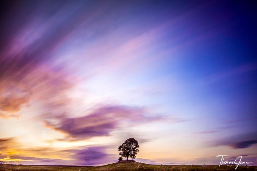 Loan Sunset