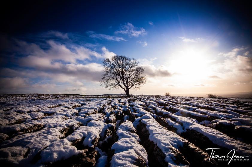 Height of Winter