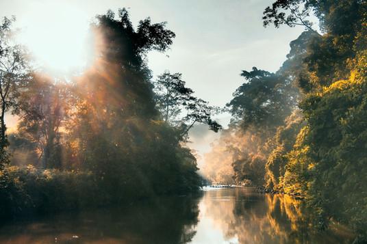 Misty Morning in Sungai Lembing
