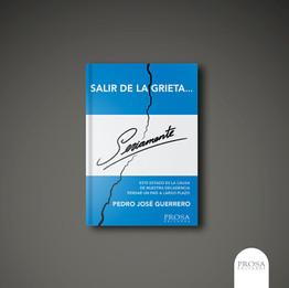 Salir de la grieta seriamente -  Pedro José Guerrero