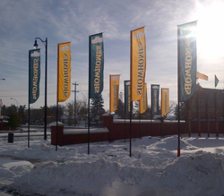 SHOW HOME FLAGS