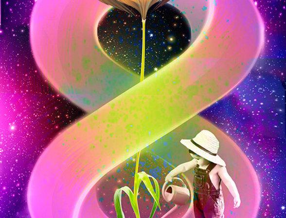 פרח האינסוף - תמונה של אורית מרטין