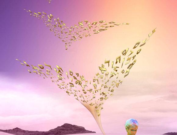 מנגינת הנשמה - תמונה של אורית מרטין