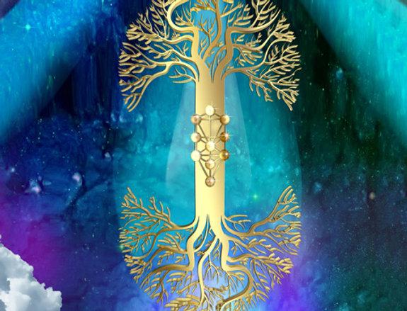 עץ החיים - תמונה של אורית מרטין