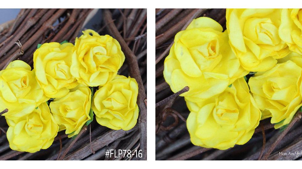 "Paper Bloom-Pastels-SIZE 1"""
