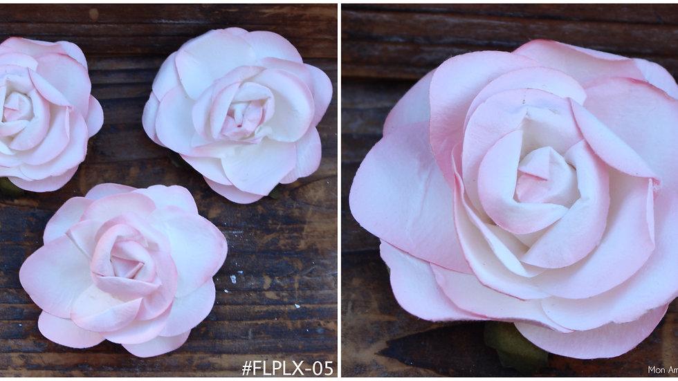 "Paper Bloom  FLPLX -2.25"""