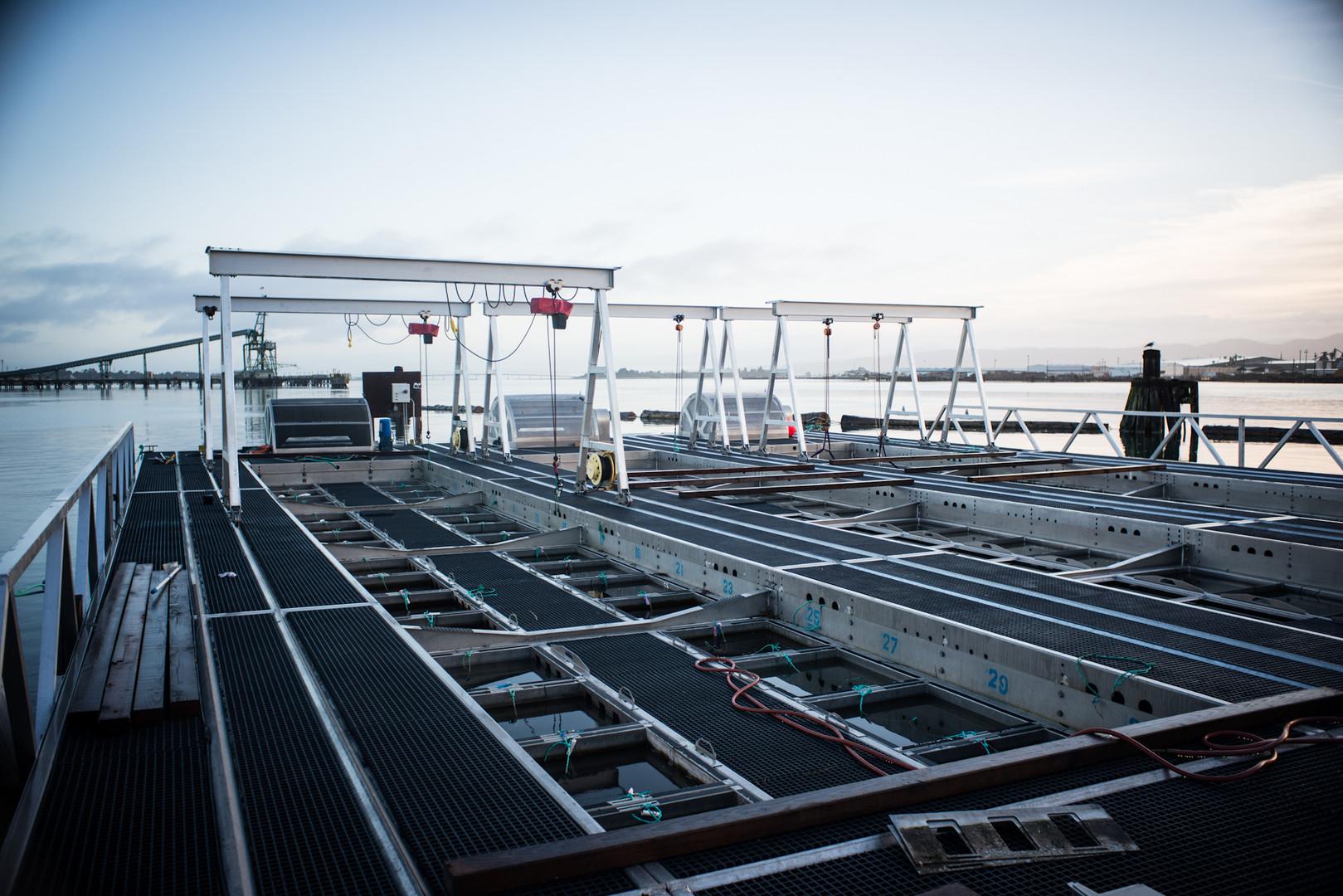 Aquaculture Installation