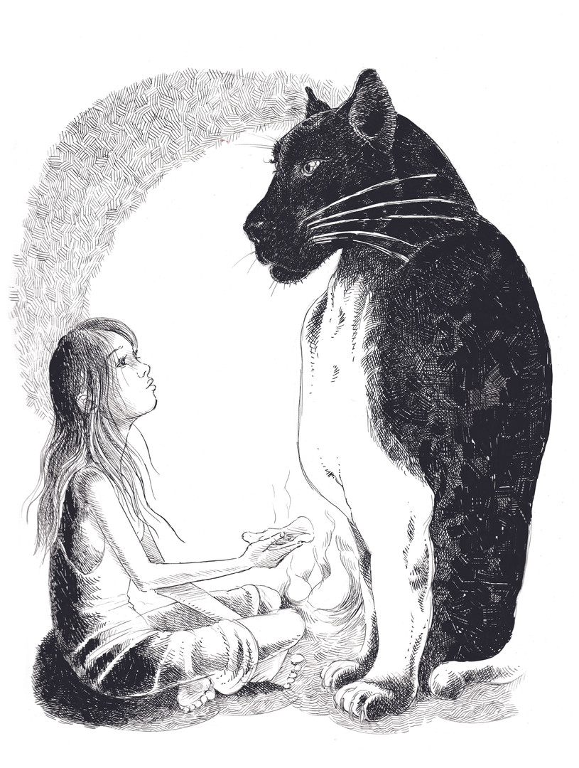 animal and people illustration