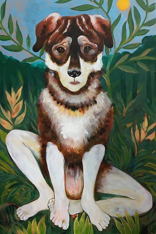 dog with people feet