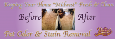 Carpet-Cleaning-Pet-Stain-and-Odor-Enid-
