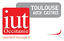 Logo_IUT_Toulouse_A.png