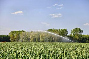 Irrigation_2.jpg
