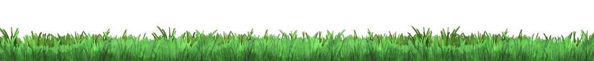 grass background.png