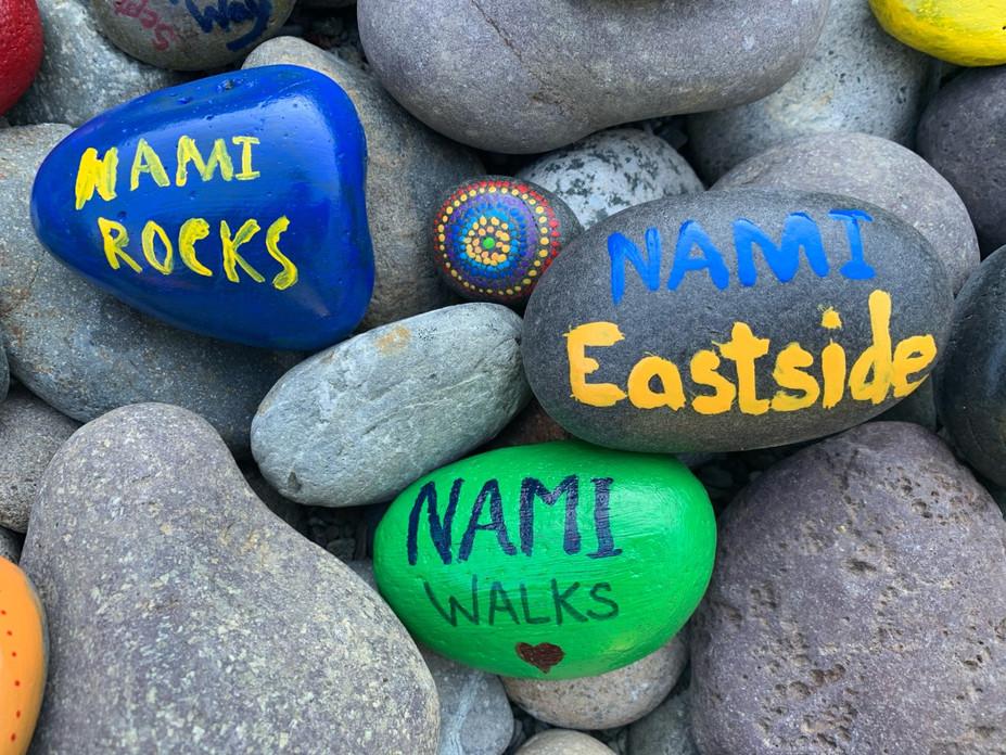 NAMI Rocks.jpg