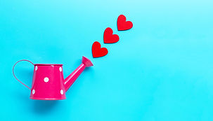 pink-watering-can-with-wooden-heart-shap