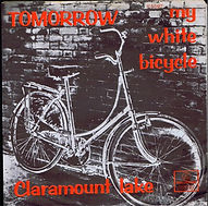 My white bicycle van Tomorrow
