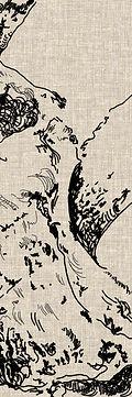 osseus site 1.jpg