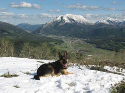 Hiking in SW Alberta with Teka