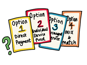 4 SDS options.png