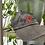 Thumbnail: Rose Hat