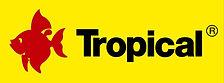 Tropical1.jpg