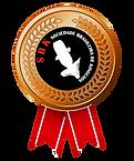 bronze sbk.png