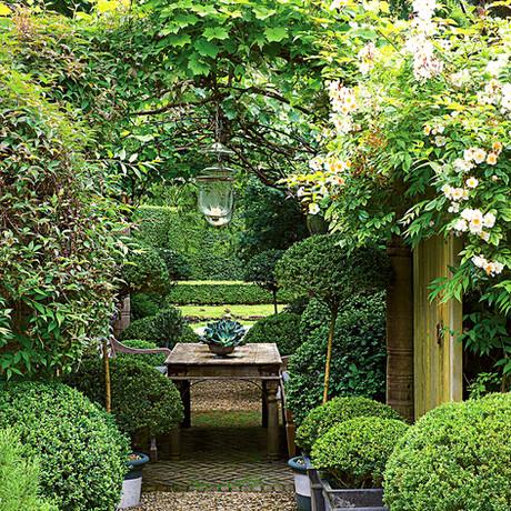 Recreando la naturaleza en el jardín de tu casa