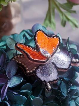 HC orange butterfly