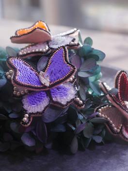 HC purple butterfly