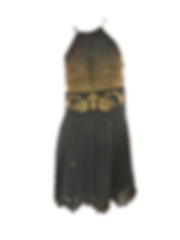 black and gold versace dress.png