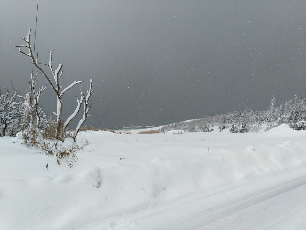 Snow&Sea