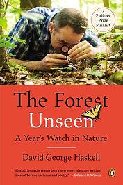 forest_unseen.jpg