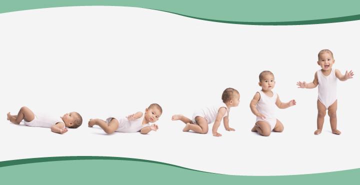 Image:istock baby development