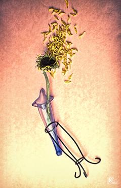 Fallen Bloom