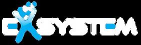 EXsystem Logo.png