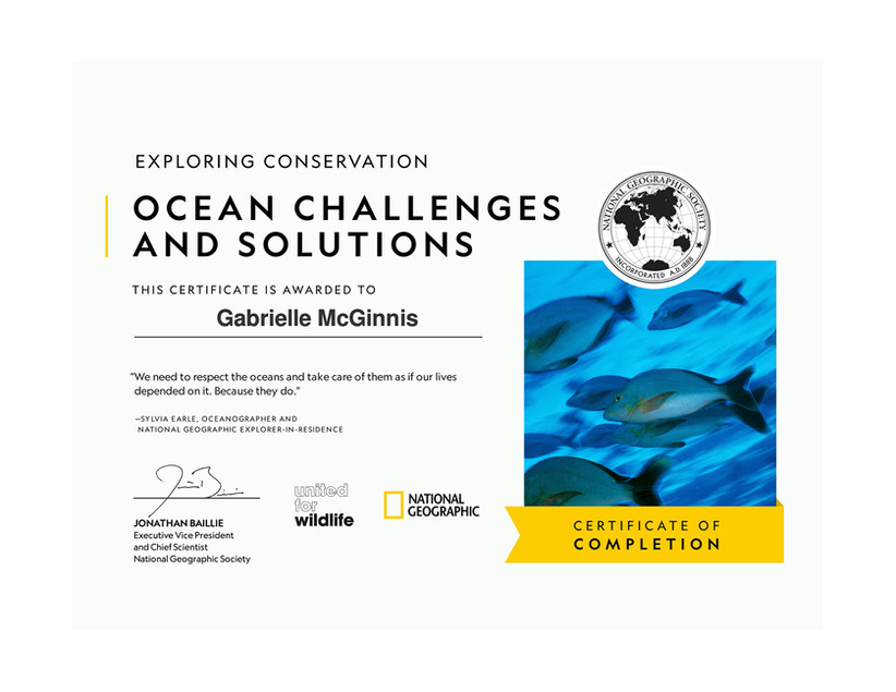 Ocean Challenges and Solutions Certificate