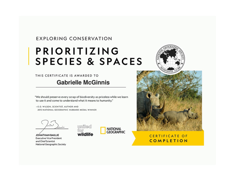 National Geographic and United for Wildlife's