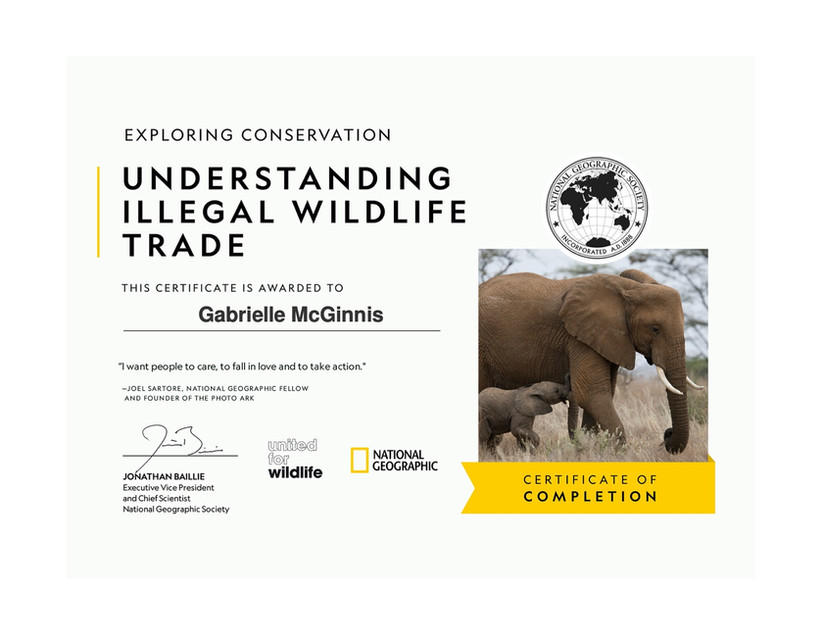National Geographic's and United for Wildlife's