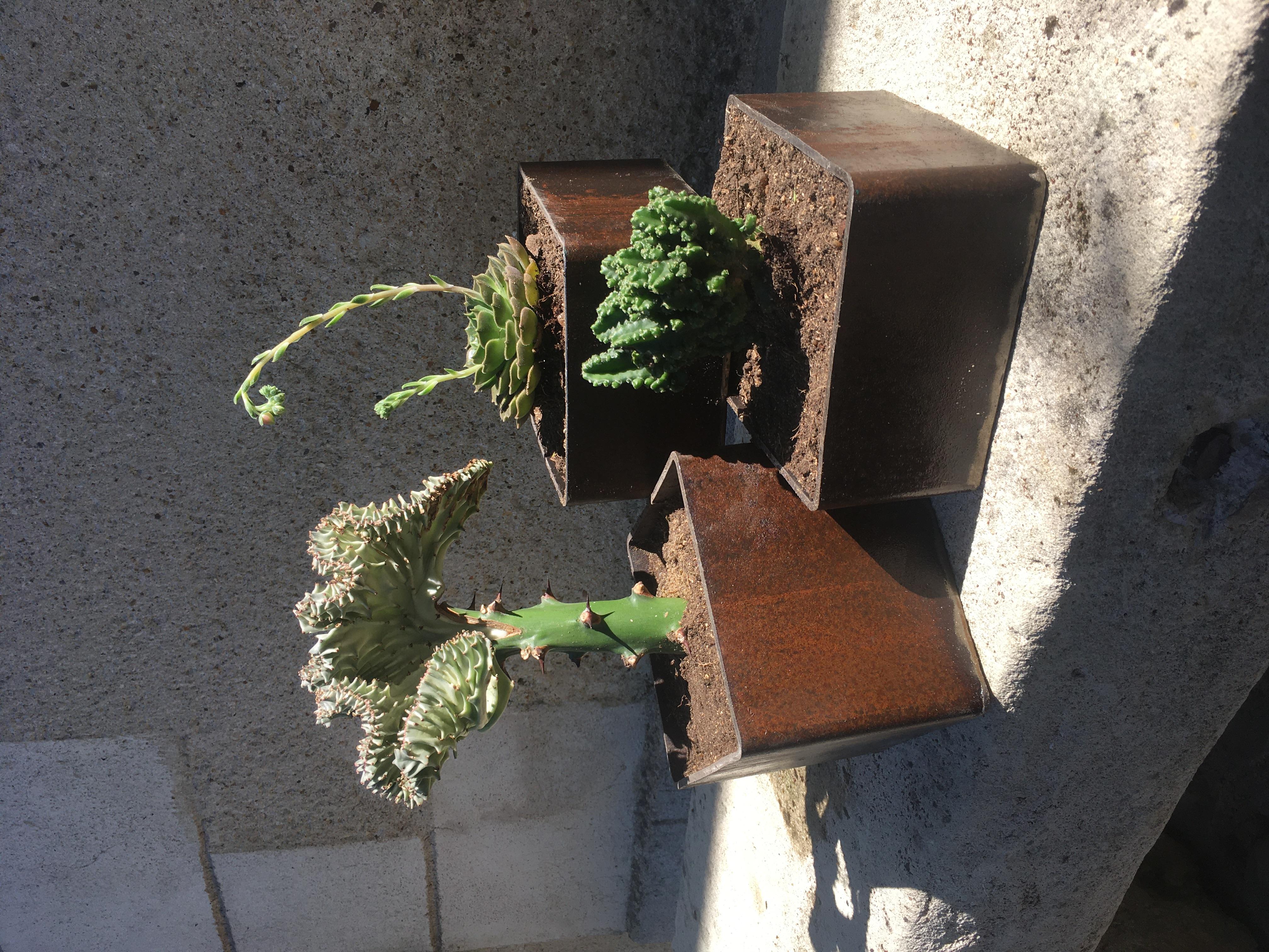 Jardinière triptyque