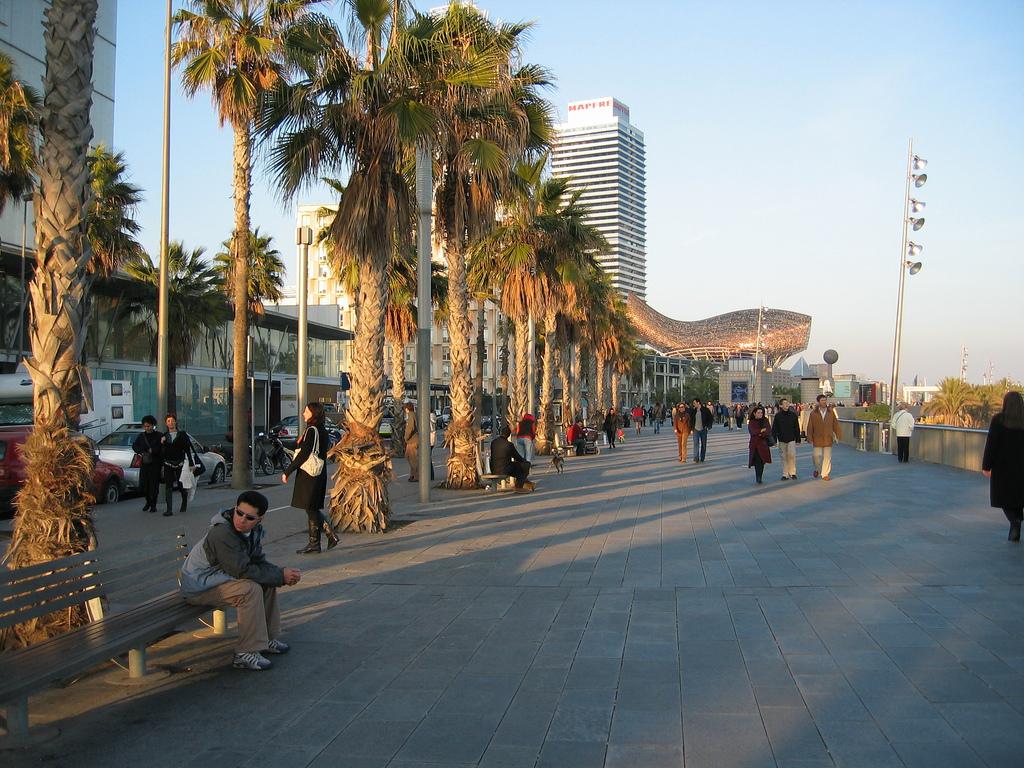 Goldener Fisch a.d. Strandpromenade